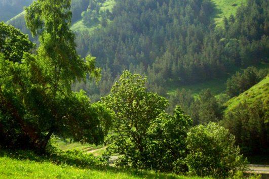 Hanqavan